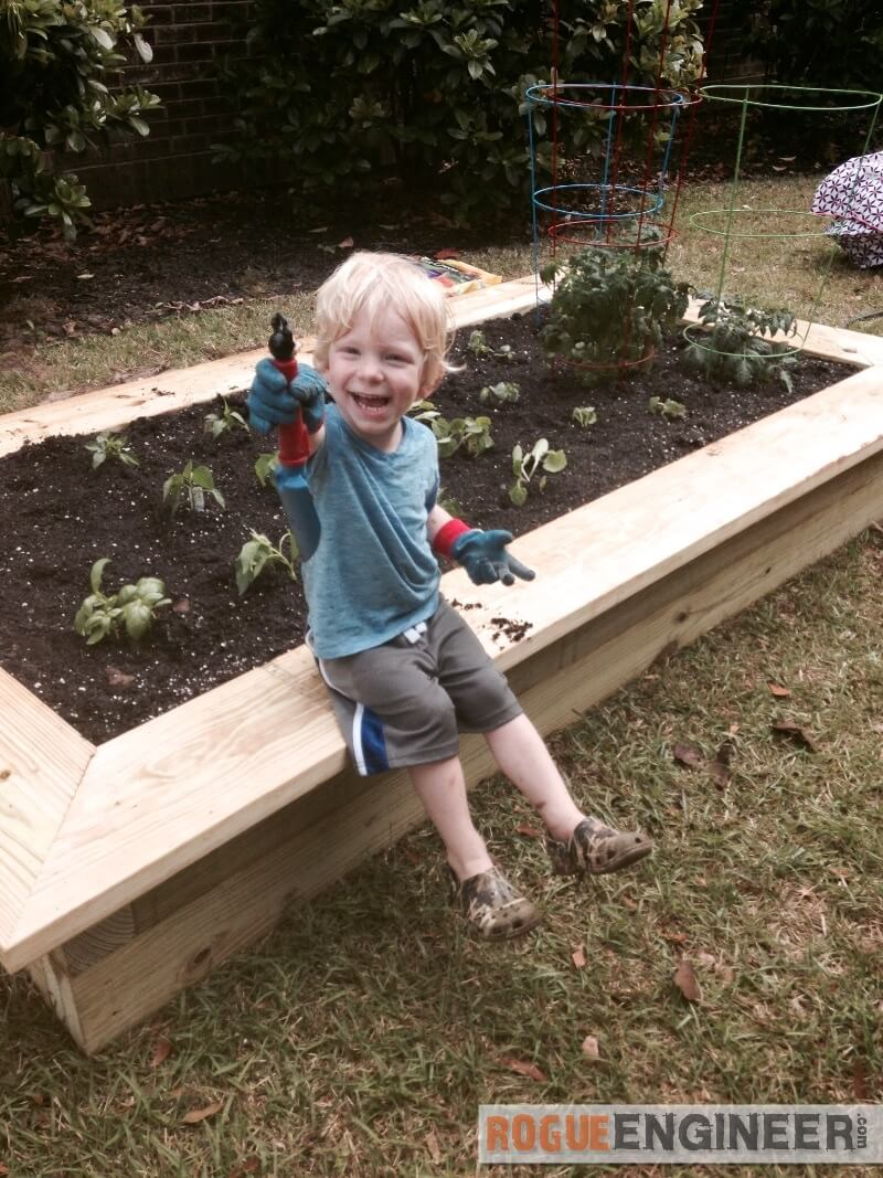 How to build a raised vegetable garden