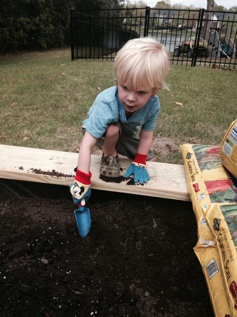 Doing some gardening
