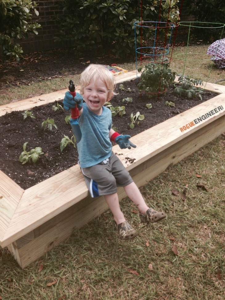 DIY Raised Vegetable Garden Plans - Rogue Engineer
