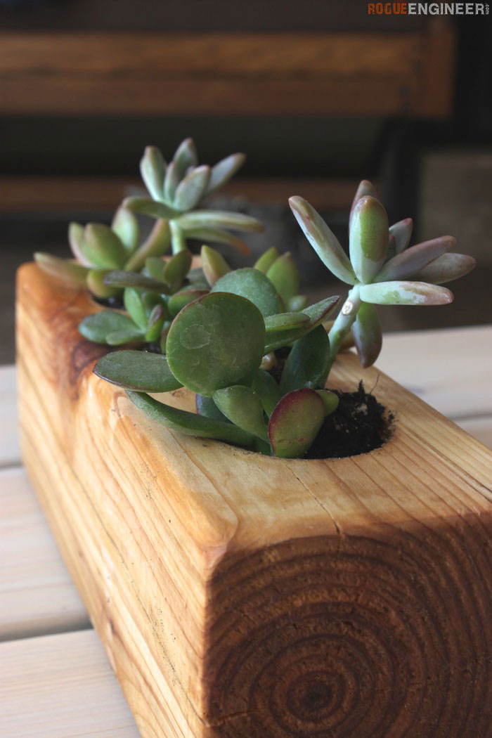 Diy Scrap Wood Succulent Planter Tutorial Rogue Engineer