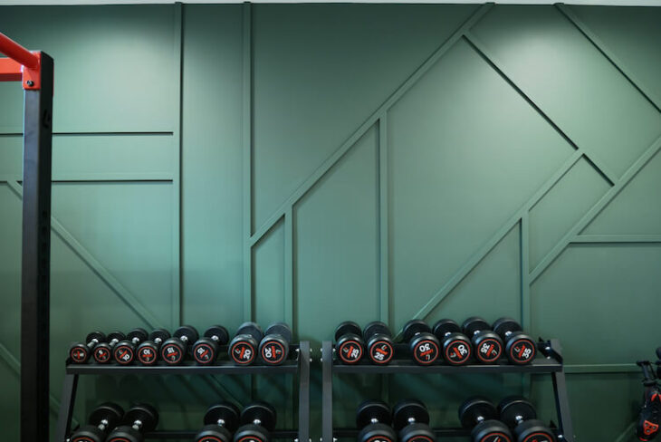 Home Gym Geometric Accent Wall Rogue Engineer 13