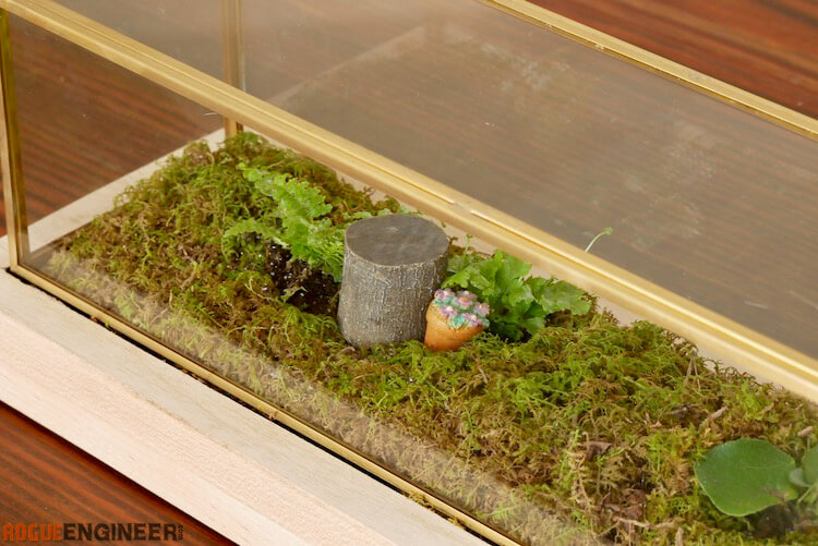 Closed Terrarium From Glass Centerpiece Rogue Engineer