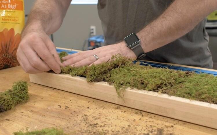 DIY Terrarium Tutorial Step 23