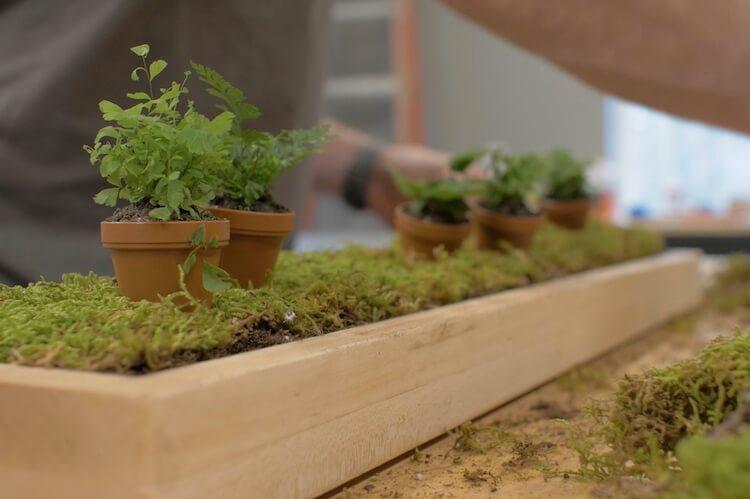 DIY Terrarium Tutorial Step 25