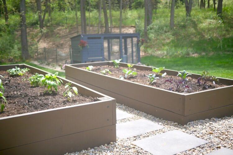 Raised Garden Bed 4